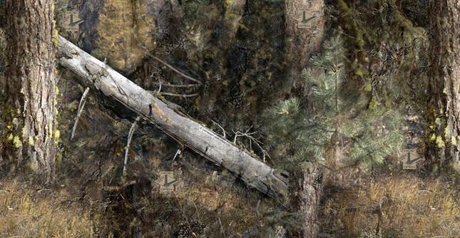 HT-Timber-Veil